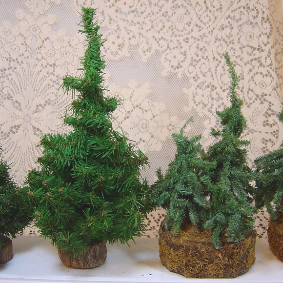 Lot of 4 Christmas evergreen trees